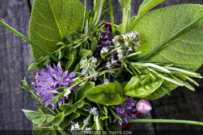 conseils de chefs edouard loubet jean sulpice jean michel lorain herbes de jardin. Black Bedroom Furniture Sets. Home Design Ideas
